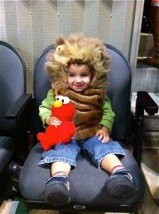 One happy little cub at Sesame Street Live!