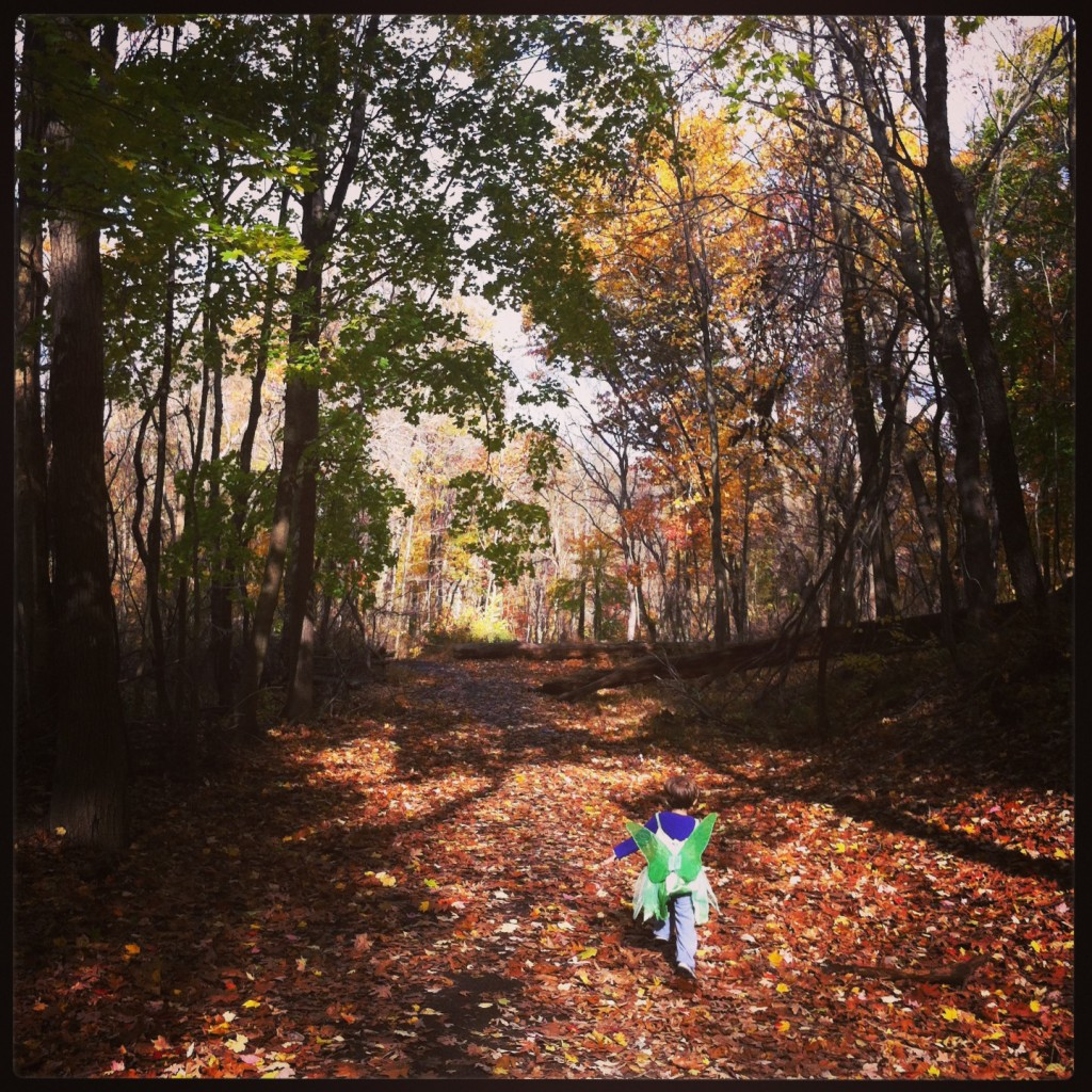 Fall hiking at Beechwood Farms, Photo by Nadine Champsi